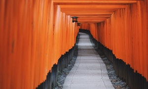 fushimi-inari-in-kyoto-japan