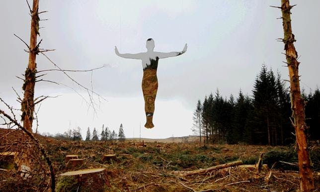 Levitate-forest-felled-rob-mulholland-1