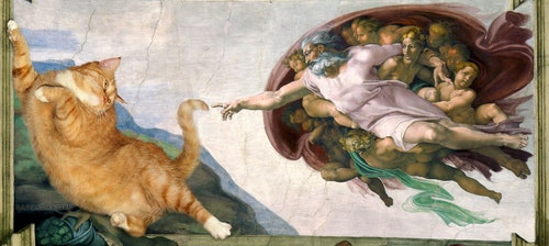 Michelangelo_-_Creation_of_cAt-dam-cat-w